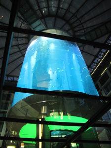 Sealife fishtank berlin