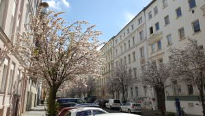 Berlin Prenzlauer Berg in Spring